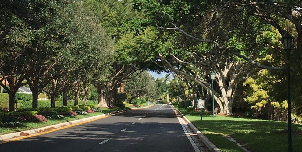 Ibis Golf & Country Club West Palm Beach Florida